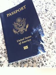 dog ate my passport