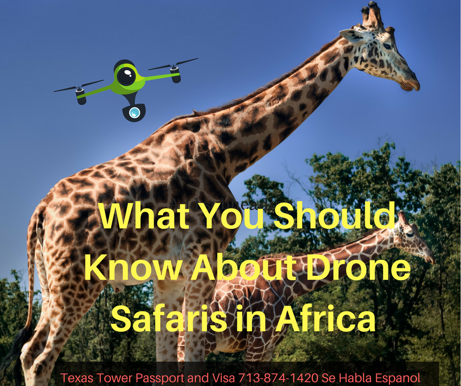 What You Should Know About Drone Safaris in Africa - Texas Tower 24